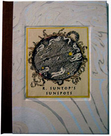 R. Suntop's Sunspots book